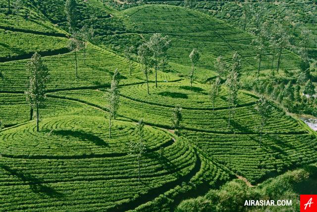 Giá vé máy bay rẻ nhất đi Sri Lanka
